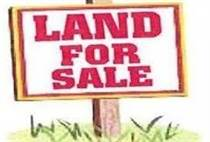 Lots and Land for Sale in Conception Bay South, Newfoundland and Labrador $59,900