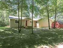 Homes for Sale in Gladwin, Michigan $279,900