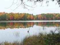 Lots and Land for Sale in Bear Lake Township, Kalkaska, Michigan $49,900