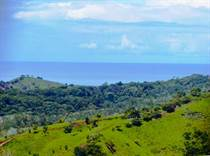 Farms and Acreages for Sale in Palmar Norte, Puntarenas $199,000