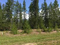 Lots and Land for Sale in Valemount, British Columbia $179,000