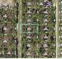 Lots and Land for Sale in Weeki Wachee, Florida $13,990