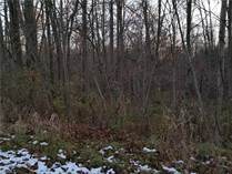 Lots and Land for Sale in Dorset, Ohio $325,000