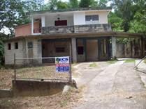 Homes for Sale in Bo. Maravilla, Las Marias Puerto Rico, Puerto Rico $55,000