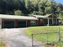 Homes for Sale in Delbarton, Williamson, West Virginia $123,000