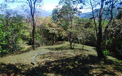 50% DISCOUNT for Large  Lot #411 in an Established Gated Mountain Community