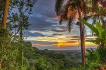Homes for Sale in Rio Cañas Abajo, Mayaguez, Puerto Rico $699,000