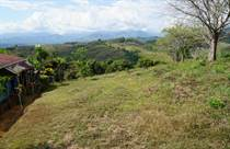 Lots and Land for Sale in Pérez Zeledón, Perez Zeledon, San José $150,000