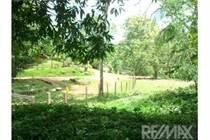Lots and Land for Sale in Puntarenas, Parrita, Puntarenas $15,000