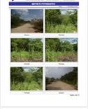 Lots and Land for Sale in Dzitya, Yucatan $85,000