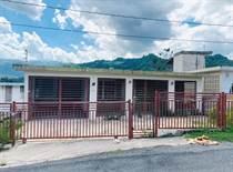 Homes for Sale in Bo. Guadiana, Naranjito, Puerto Rico $80,000