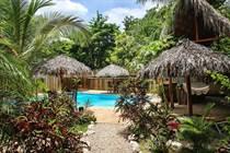 Commercial Real Estate for Sale in Playa Grande, Guanacaste $600,000
