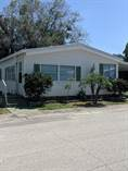 Homes Sold in Shady Lane Oaks, Clearwater, Florida $34,900