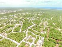 Homes for Sale in Aldea Zama, Tulum, Quintana Roo $7,914,908