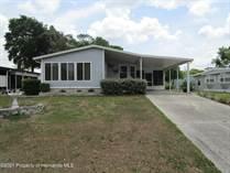 Homes for Sale in Brookridge, Florida $134,000