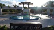 Lots and Land for Sale in Playa del Carmen, Quintana Roo $80,000