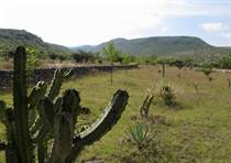 Lots and Land for Sale in Alcocer, San Miguel de Allende, Guanajuato $853,300