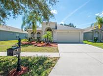 Homes for Sale in Carriage Pointe, Gibsonton, Florida $350,000