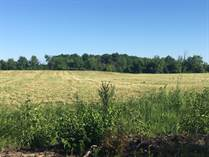 Lots and Land for Sale in Kemptville, Ontario $74,900