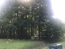 Lots and Land for Sale in Stanton, Michigan $18,000