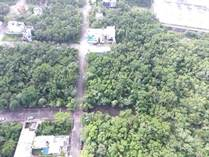 Lots and Land for Sale in Playa del Carmen, Quintana Roo $114,000