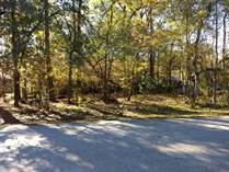 Lots and Land Sold in Roman Forest, New Caney, Texas $25,000