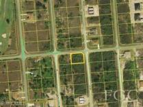 Lots and Land for Sale in Lehigh Acres, Florida $19,999