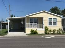 Homes for Sale in Lake Haven, Dunedin, Florida $125,000
