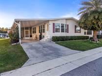 Homes for Sale in Forest Lake Estates, Zephyrhills, Florida $58,000