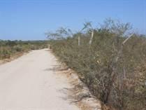 Lots and Land for Sale in East Cape, El Campamento, Baja California Sur $10,000