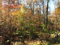 Lots and Land for Sale in Washington Township, Martinsville, Indiana $149,000