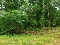 Lots and Land for Sale in Graham, North Carolina $42,900
