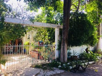 "Merida, Yucatan presents ""SAN ANTONIO CINTA LOT"" Located at the North of the City"