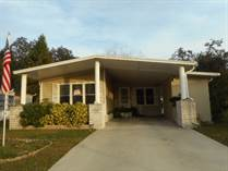 Homes for Sale in Featherock, Valrico, Florida $39,500