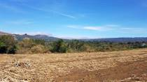 Lots and Land for Sale in Grecia, Alajuela $6,000,000