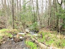 Lots and Land Sold in Monteagle Valley, Hastings Highlands, Ontario $29,800