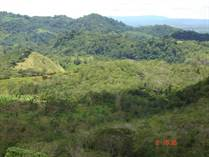 Farms and Acreages for Sale in Cortez, Puntarenas $199,000
