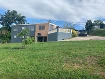Homes for Sale in Pugnado, Puerto Rico $265,000
