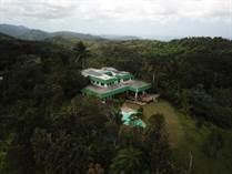 Commercial Real Estate for Sale in Naranjo, Fajardo, Puerto Rico $3,000,000