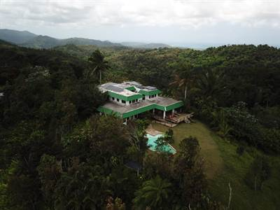 El Hotelito At The Rainforest , Fajardo