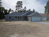 Homes for Sale in Spring Hill, Florida $204,900
