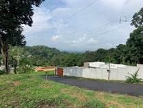 Lots and Land for Sale in Barrio San José, Atenas, Alajuela $43,000