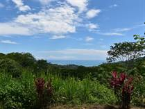 Farms and Acreages for Sale in Dominical, Puntarenas $729,000
