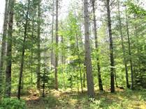 Lots and Land for Sale in South Baptiste Lake Road, Birds Creek, Ontario $57,800