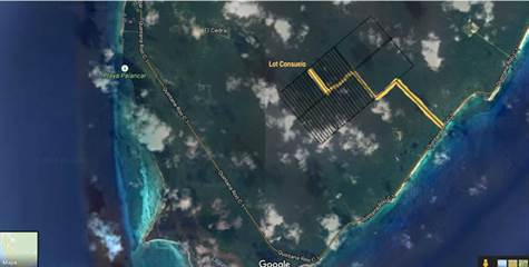 Lot or Land for Sale in South Coast, Cozumel, Quintana Roo $43,000 Satellite Map Of Cozumel on snorkel sites map of cozumel, tourist map of cozumel, road map of cozumel, driving map of cozumel, snorkeling in cozumel, city of cozumel, aerial view of cozumel, world map cozumel, printable map of cozumel, longitude of cozumel, culture of cozumel, attractions of cozumel, map of cancun and cozumel, prettiest beach in cozumel, best dive sites cozumel, satellite view of local weather, mayan ruins excursions in cozumel, mapa de cozumel, google map cozumel, satellite view of cozumel,