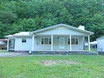 Homes for Sale in Wharncliffe, Gilbert, West Virginia $80,000