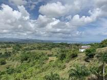 Lots and Land for Sale in Rio San Juan, Maria Trinidad Sanchez $9,900