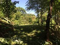 Lots and Land for Sale in Playa Nosara, Guanacaste $20,000