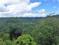 Lots and Land for Sale in Ojochal, Chontales, Puntarenas $79,900