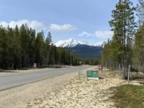 Homes for Sale in Valemount, British Columbia $150,000